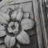 Rock_flower__rome__photograph_on_museum_quality_paper