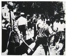 Birmingham Race Riot, Andy Warhol