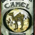Camel_pack_art_dt