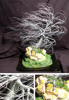20100811072739-coral_wind_swept_composit_100_dpi_large