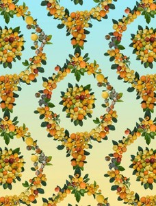 20100814143921-015_wallpaper-350x460