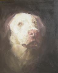 Sad Dog (Lost), Paul Mullins