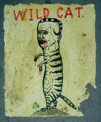 Wild Cat, Fred Stonehouse
