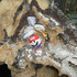 20100818181704-april-dragohead-05web_05