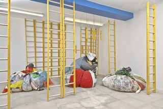 Attitudinasaurus Rex (installation view),Agathe Snow