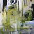 20100827102213-opus-2010-lrsmall