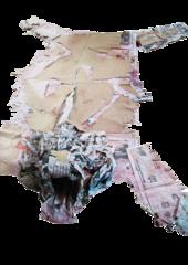 paper tiger, siddhartha kararwal