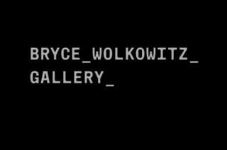 , Bryce Wolkowitz Gallery