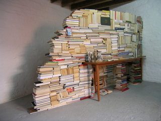 Books in Limbo,