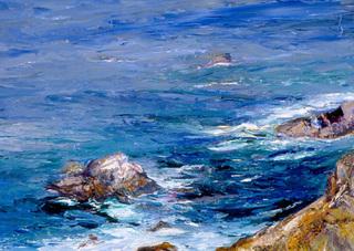 Pt. Reyes Coast, Idell Weiss