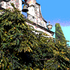 20100907183005-bell_tower_in_the_trees_copy