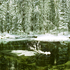 20100909130515-yosemite_winter6