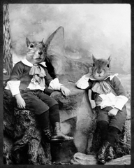 Squirrelton Twins, Grand Ole Bestiary