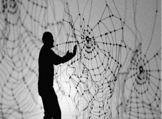 Discarded Spider  , Carlos Amorales