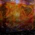 20100910130117-colorfest3a
