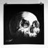 20100912143859-skull_2