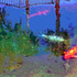 20100912184246-colorfull-koi-lisa300dpi