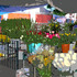 20100912184417-flower-market-juana-lisa300dpi