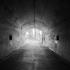 Gallery_paul_hendrik_tunnel_light_03