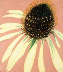 Echinacea, Lois Dodd