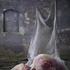 20100916123539-lucia_loisodusk