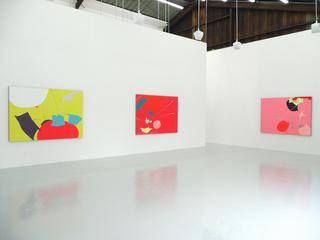 Recreational Systems installation, Heather Gwen Martin