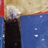 20100920151156-7_oilstop_detail2