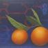Troubled-oranges
