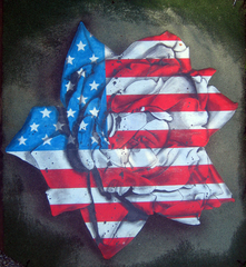American Rose, Gabriel Reese