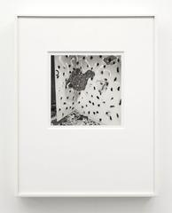 Vandalism Portfolio 74V2, John Divola