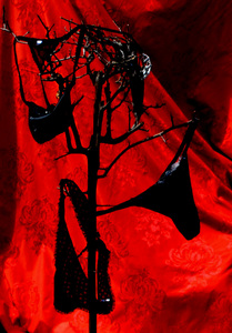 20100928081455-red_and_black2