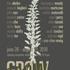 20100930132026-grow_flyer