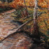 20101004201747-autumn_reflections