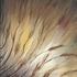20101004204844-nadine_s_paintings_september_08_022