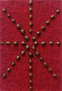 20110203084918-ladybugs_2008__5_22_x_3_22_