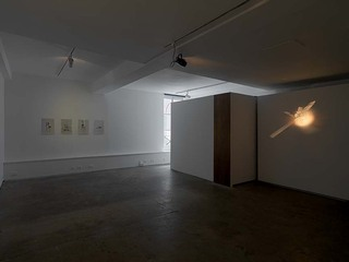 Percussion,Installation view