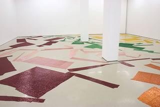 Installation View, Polly Apfelbaum