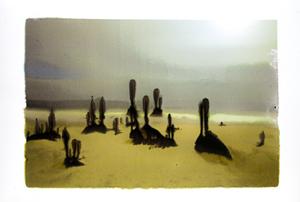 20101012085907-slurry_moonlight_ocean_beach__mg_2771