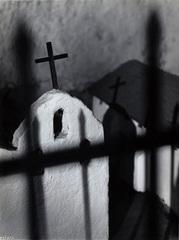 Crosses, Emily J. Hara