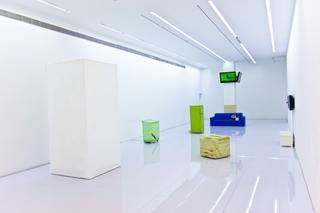 Installation View, Wang Yuyang, Hu Xiangqian