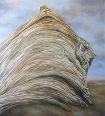 Summerlands, Tom Allen