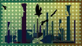 Bird Void, Chris Doyle