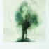 20101027075231-polaroid-two_trees