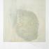 20101027075455-polaroid-stain_1