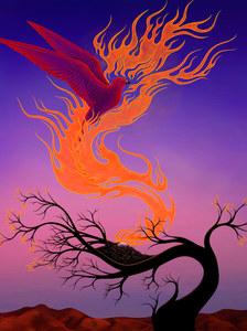 20101028021932-phoenix