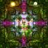 20101028163533-immaculate_forest_prayer_dance_3__watermark_web_