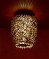 Urchini (Slender), Stuart Haygarth