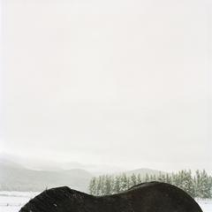 Horseback Mountain, Colleen Plumb