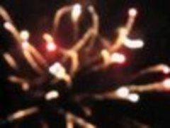 20101102044114-davida