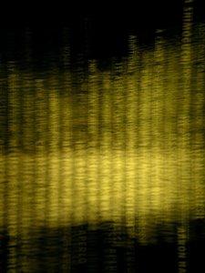 20101102140230-socalportrait-creditdue2